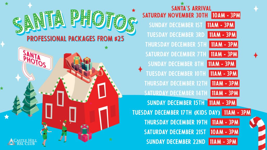 Professional Santa Photos